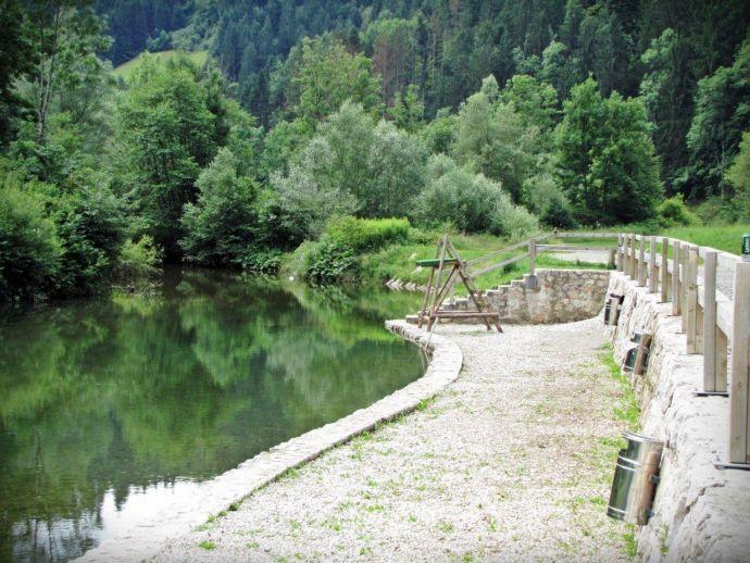 The Pustotnik Pool