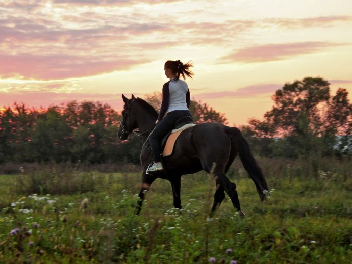 Scuola di equitazione Pot