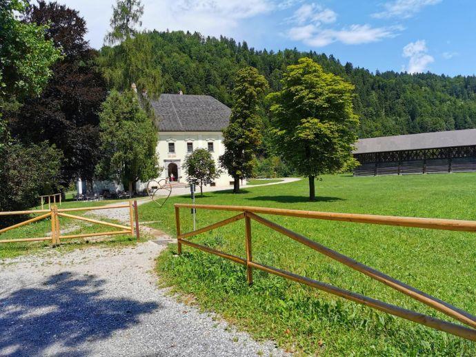 Visoko Palazzo