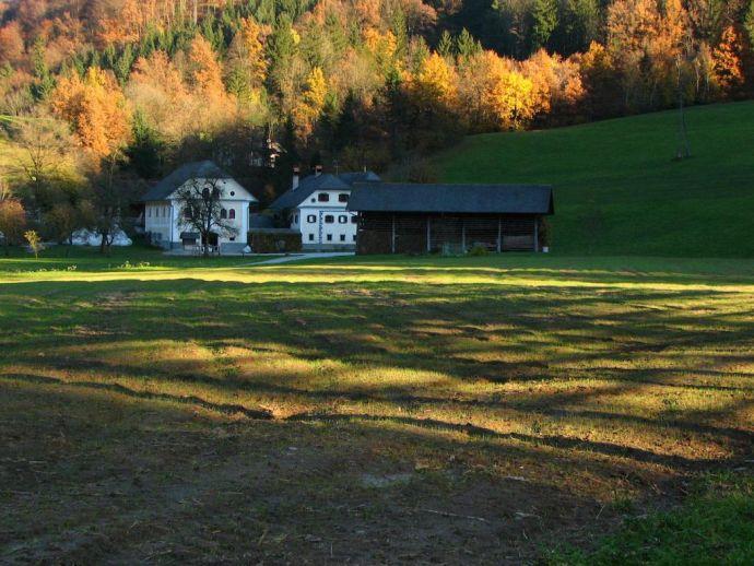 Appartamenti nella fattoria Cvetje v jeseni