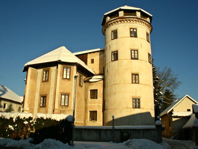 Das Schloss in Stara Loka