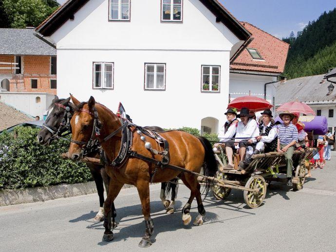 Tourist association Žiri