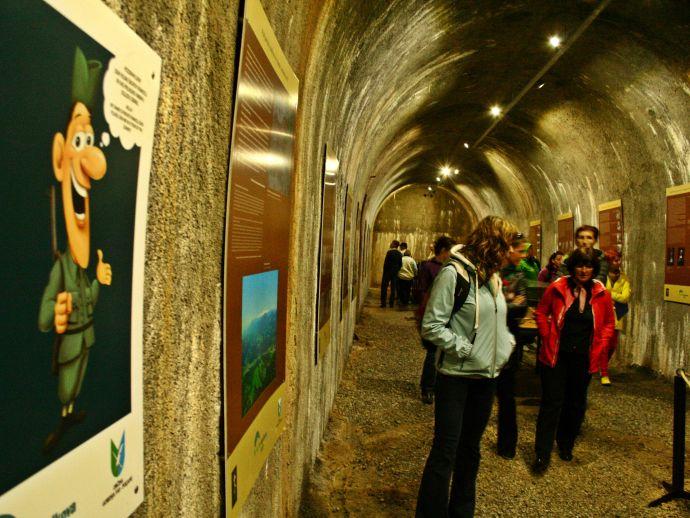 Underground Fortification on the ridge of Goli vrh